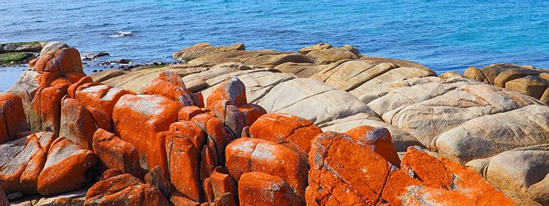 Voyage Australie : La Baie des Feux