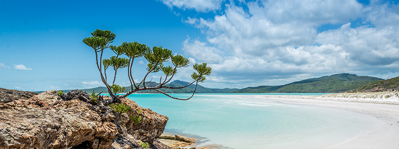 Voyage Australie : Whitsundays